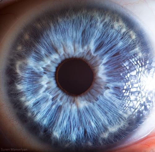 Human Eye 32