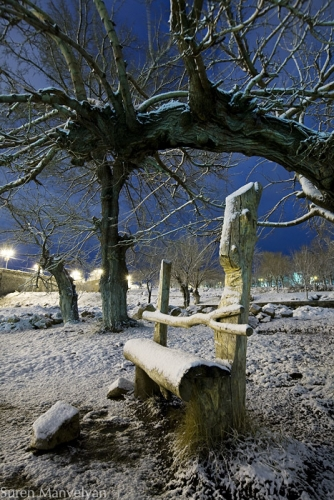 Christmas fairy bench